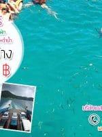 ทัวร์เกาะช้าง พักหรู 4 ดาว พร้อมสระว่ายน้ำ เริ่มต้น 1,990 บาท ตลอดปี 2560